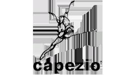 brand_capezio
